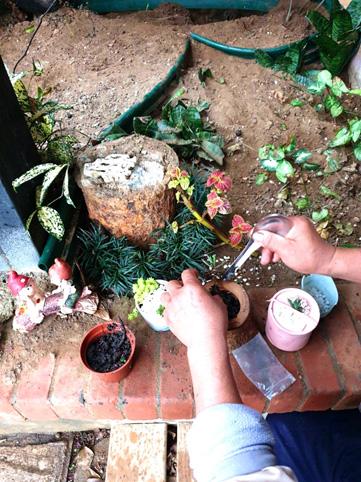 Succulents Step2 02