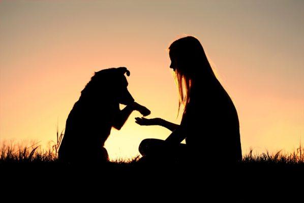 寵物溝通師帶給我們另一種安慰